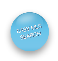 Easy MLS Search